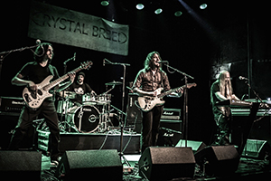 Crystal Breed, De Bosuil
